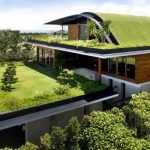 Container Home Green Roof, Roof Garden