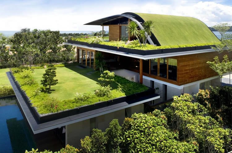 container home green roof 5